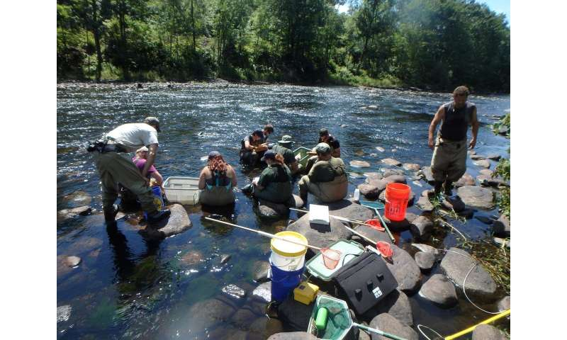 Coldwater streams may provide refuge against changing climate