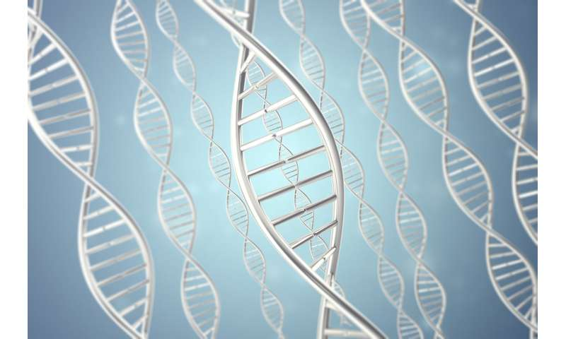 Custom-built DNA could be used as a sensor probe
