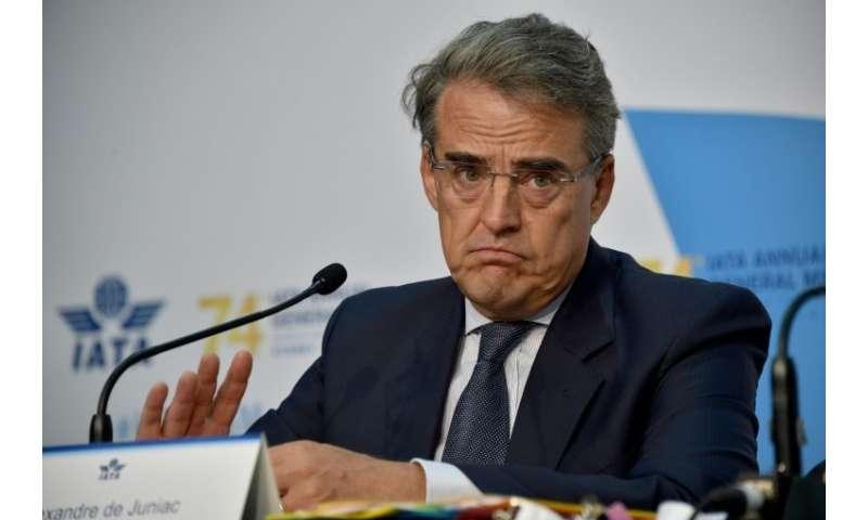 De Juniac said IATA still hoped for a comprehensive agreement including aviation