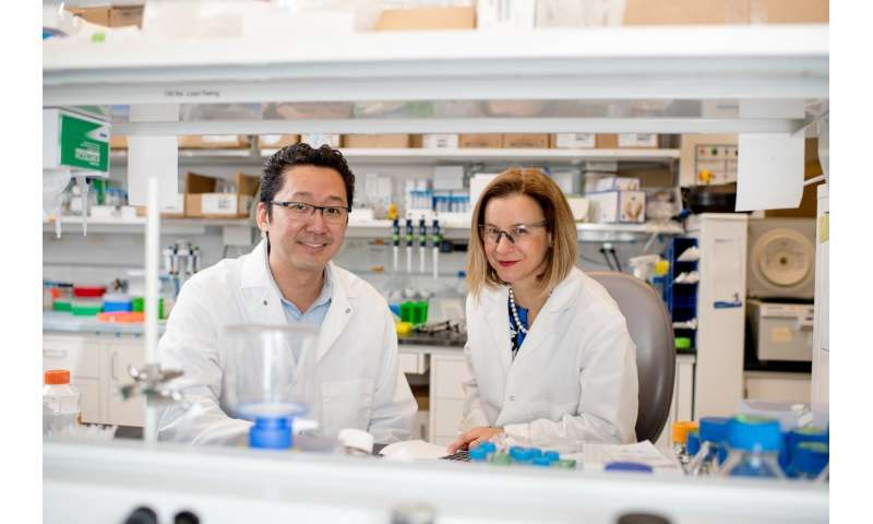 Delivering cancer treatment on a nanodisc helps eliminate tumors