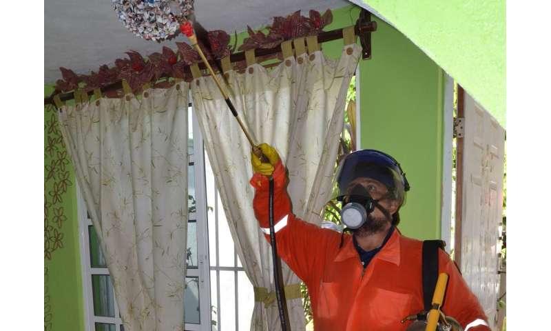 Dengue 'hot spots' provide map to chikungunya and Zika outbreaks