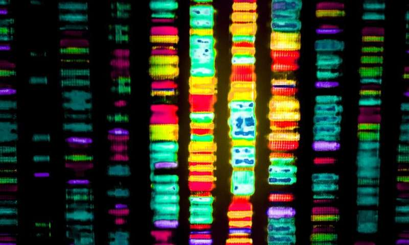 DNA sequencing and patient data used to halt infection outbreak