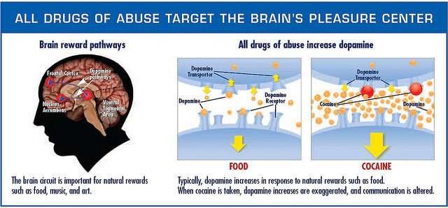 Dopamine, drugs, and depression