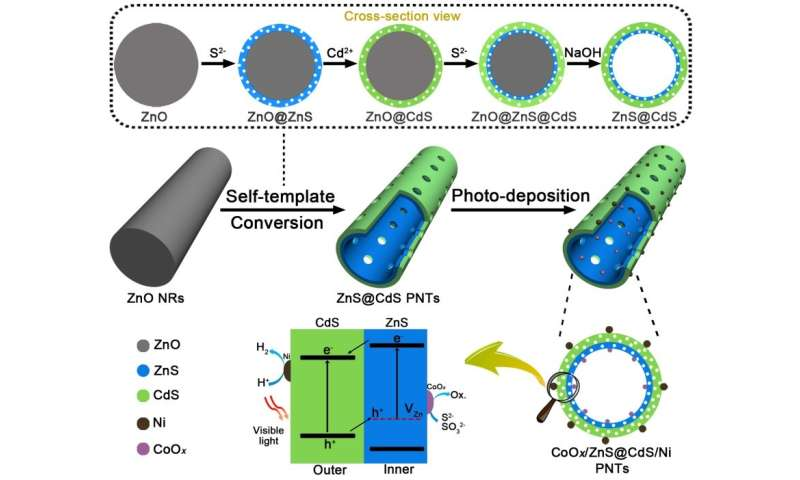Double-layered porous nanotubes with spatially separated photoredox surfaces