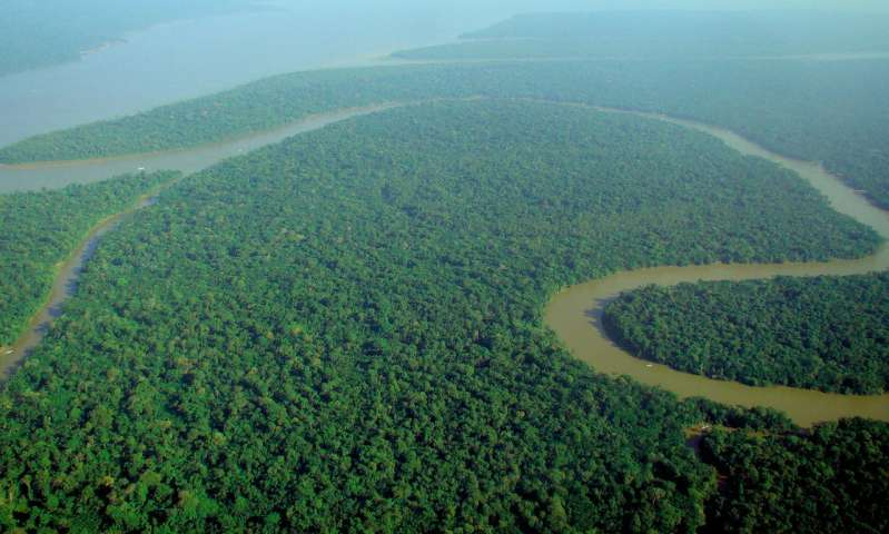 Drones and satellite imaging to make forest protection pay