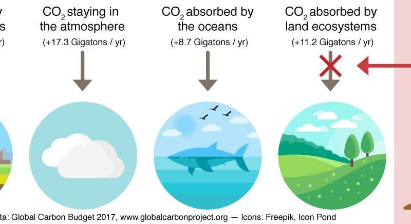 Drought increases CO2 concentration in the air