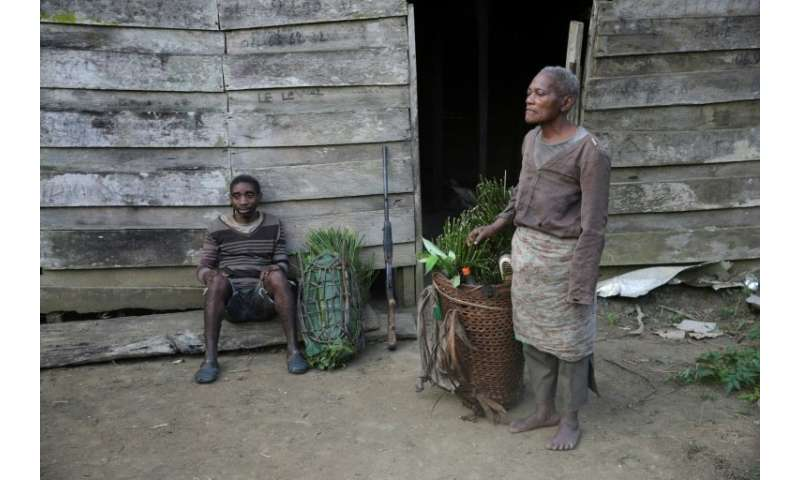 Ebona is one of the ethnic Baka Pygmies in Gabon whose profound knowledge of the forest is their sole source of income