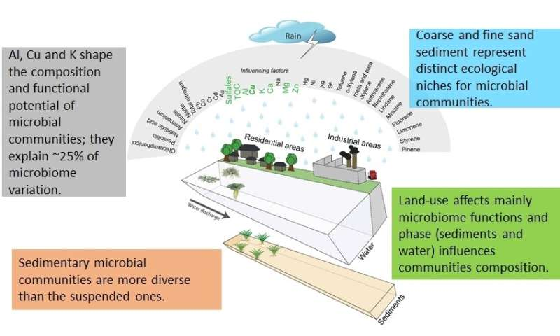 Ecological functioning of urban waterways