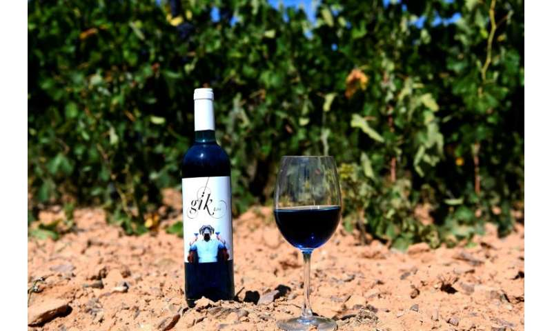 Electric blue in colour, the wine is made of mainly white wine with a small amount of red and a tiny bit of freshly-crushed grap