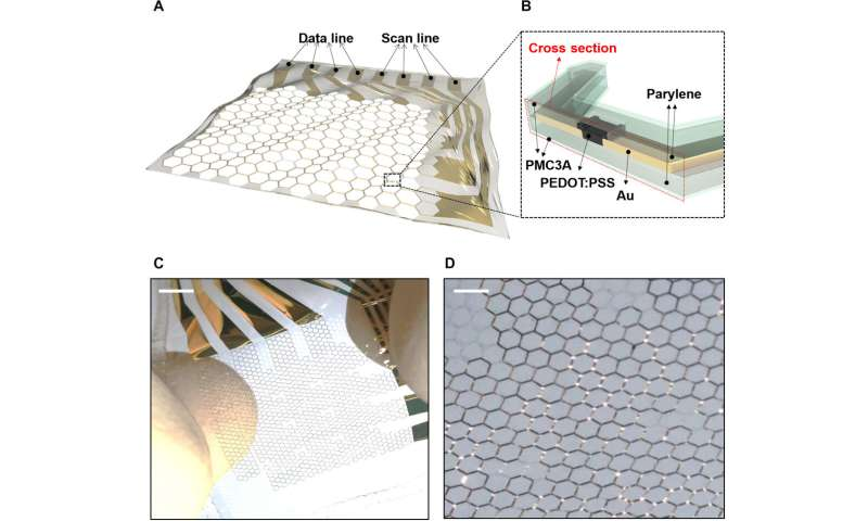 **Electroanatomical Mapping with Non-thrombogenic, Stretchable and Active Multielectrode Arrays (MEAs)