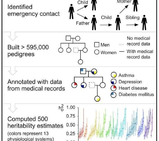 Emergency contact information helps researchers branch out family tree
