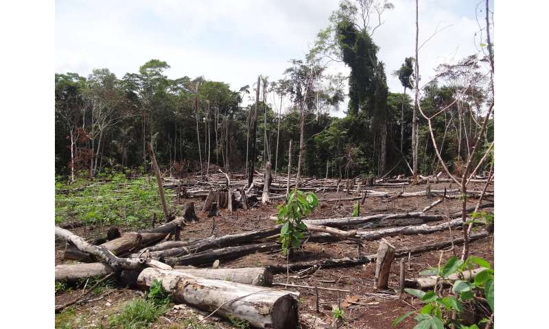 End of Colombia conflict may bring new threats to ecosystems