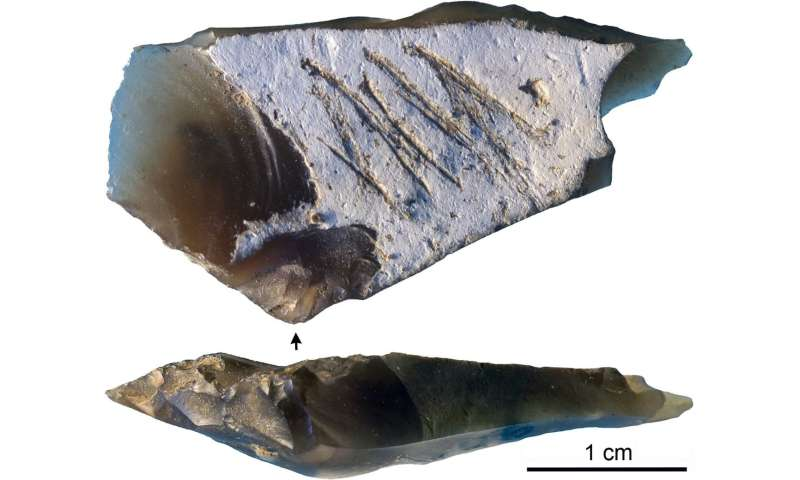 Engraved Crimean stone artifact may demonstrate Neanderthal symbolism