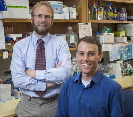 Epigenetic reprogramming of human hearts found in congestive heart failure