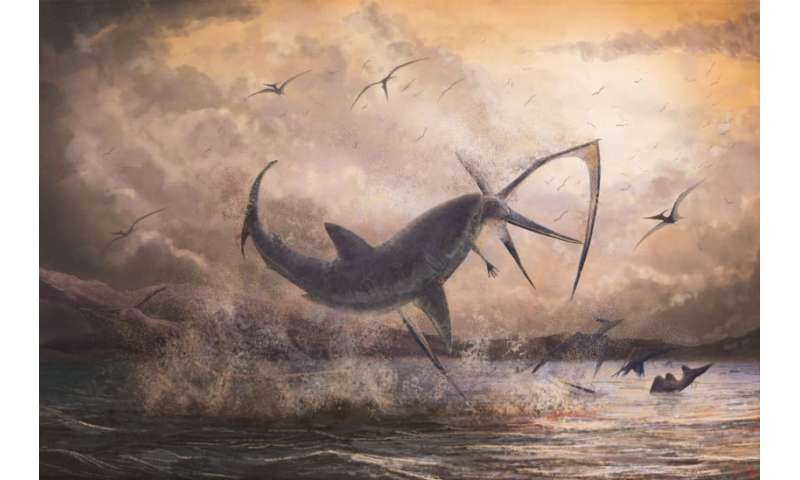 Evidence of a fearsome shark taking down a pterosaur in mid-flight