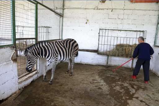 False 'malnourished' report prompts Albania zoo closure