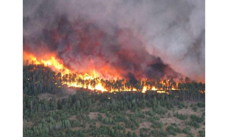 Fire's effects on soil moisture, runoff