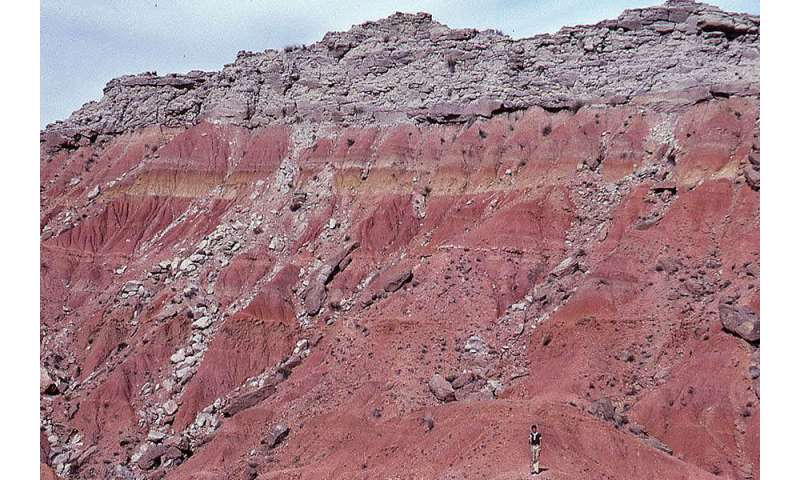 Fires fueled spread of grasslands on ancient Earth
