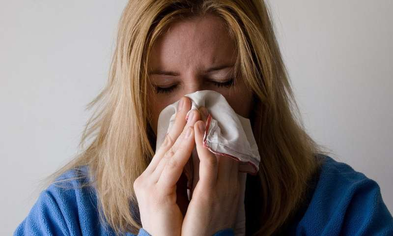 Common food additive may weaken defenses against the flu