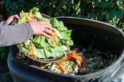 Food waste conversion to biomethane within the reach of four cities across Europe