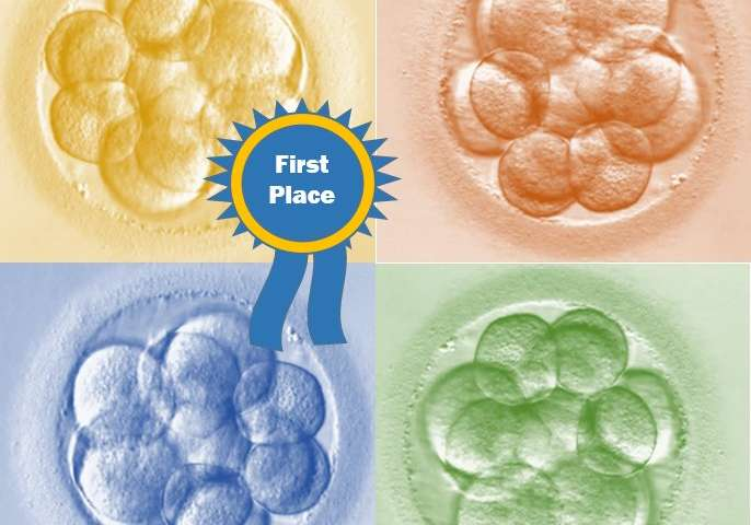 Frozen embryo transfer versus fresh embryo transfer: What's riskier?