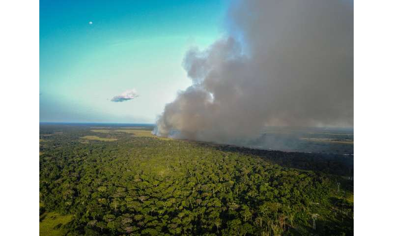 FSU researchers: Savanna fires pump Central African forests full of nitrogen