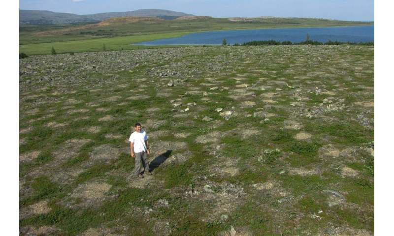 Gaining a bird's eye view of the greening of the Arctic