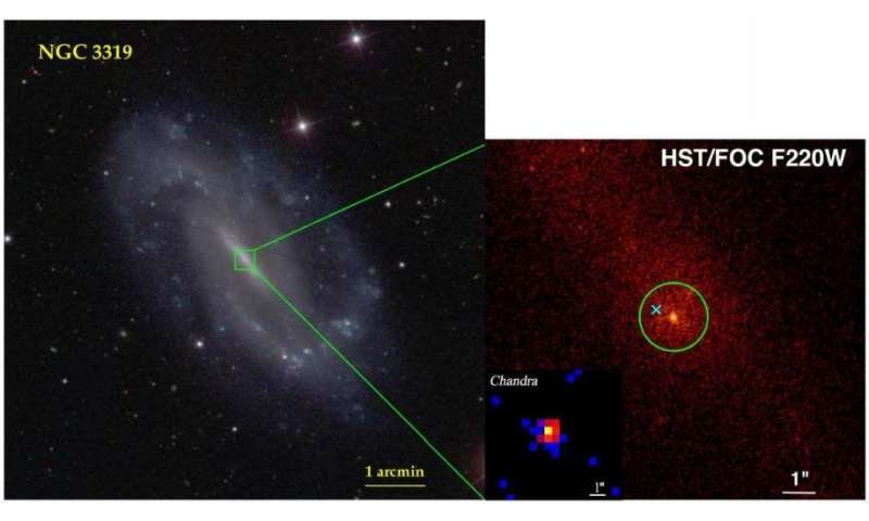 Galaxy NGC 3319 may host an active intermediate-mass black hole, study finds
