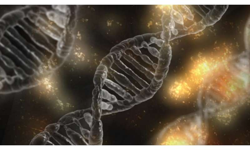 Scientists Discover Possible Genetic >> Salk Scientists Find Genetic Signatures Of Biological Aging