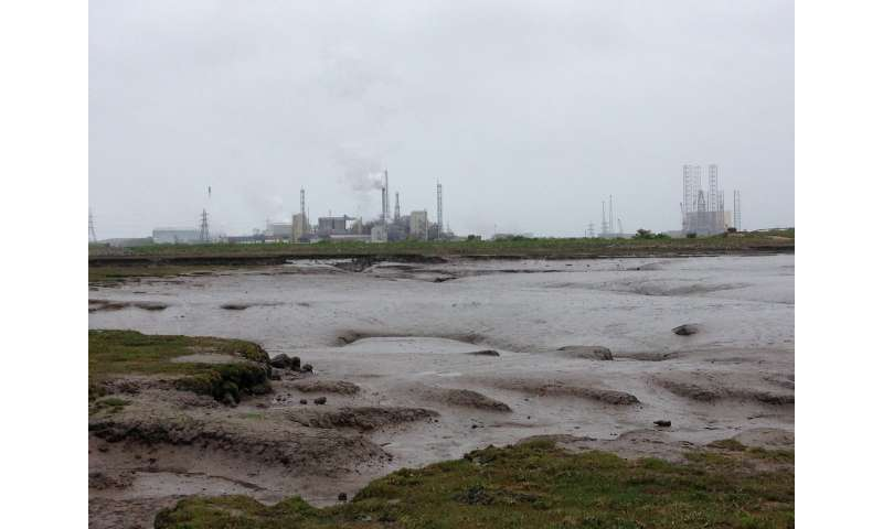 Geological records reveal sea-level rise threatens UK salt marshes, study says