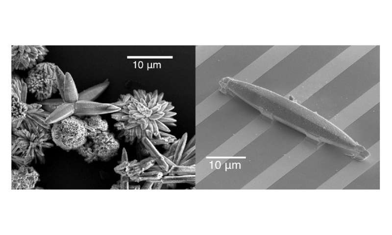 Getting a charge out of MOFs