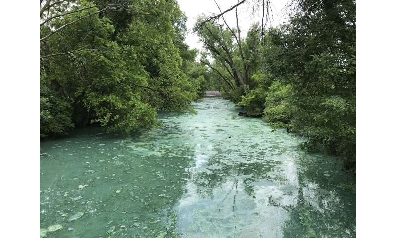 Heavier rains and manure mean more algae blooms
