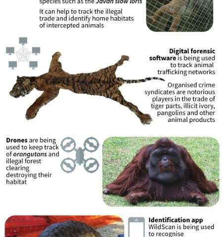 High-tech conservation in Indonesia