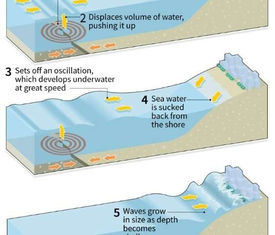 How an earthquake-generated tsunami occurs