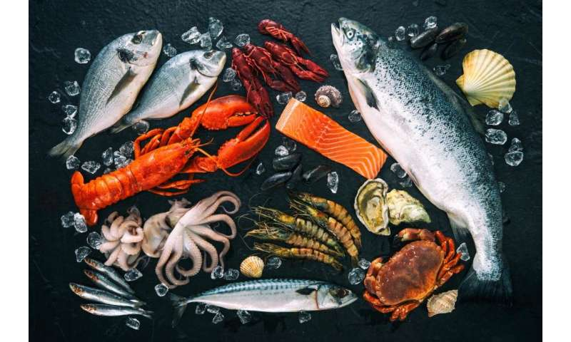How much fish do we consume? First global seafood consumption footprint published