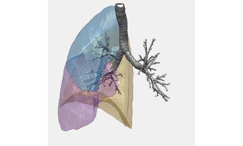 How the power of mathematics can help assess lung function