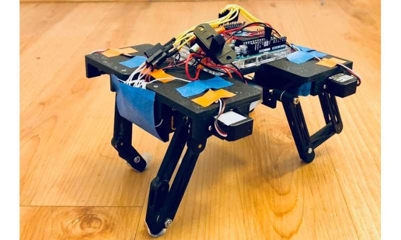 How to build a robot that mimics the moves of animals — and why you'd want to