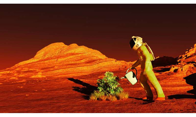 How to grow crops on Mars if we are to live on the red planet
