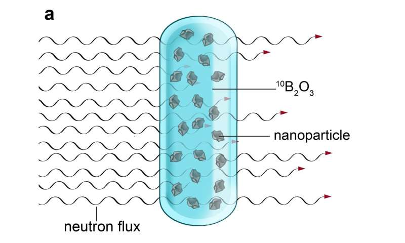How to produce fluorescent nanoparticles for medical applications in a nuclear reactor