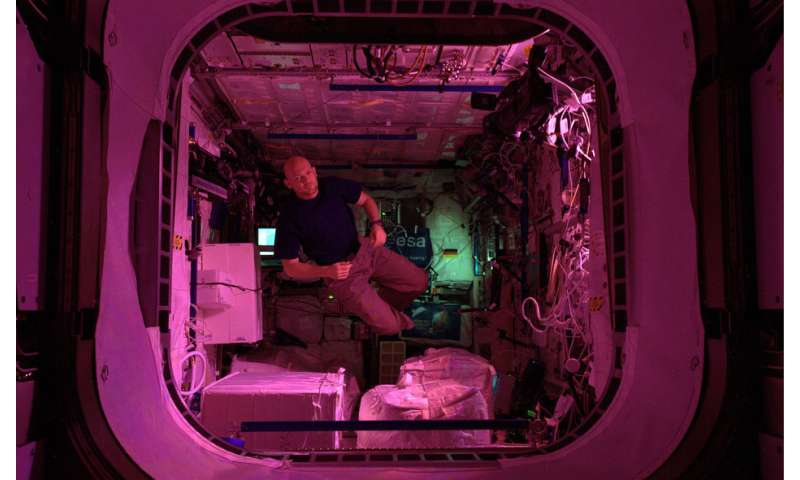 Image: ESA astronaut Alexander Gerst in the ISS European Columbus laboratory