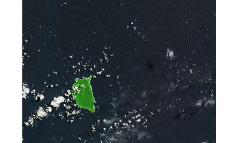 Image: Henderson Island