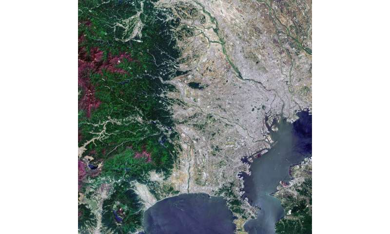 Image: Tokyo from orbit