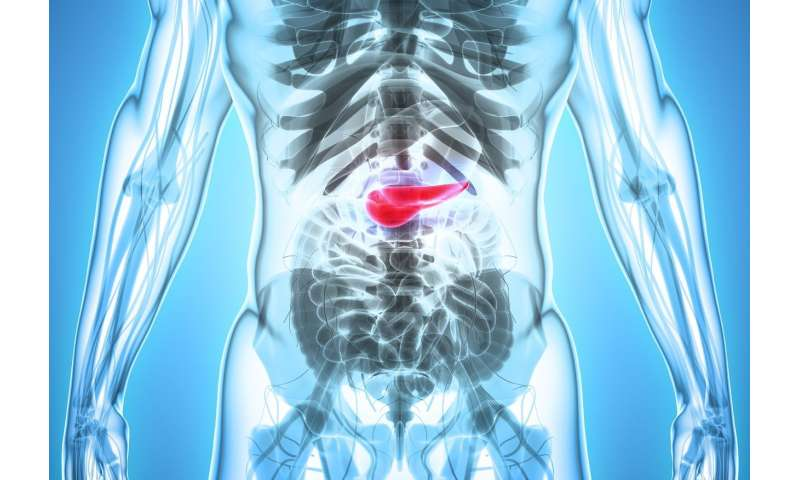 Improving survival in pancreatic cancer with platinum-based chemotherapy