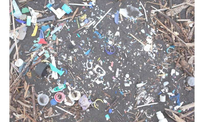 Increase in plastics reaching remote South Atlantic Islands