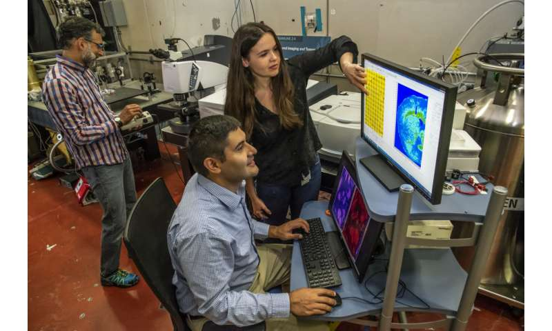Infrared beams show cell types in a different light