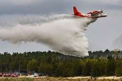 Instant solution helps fight forest fires
