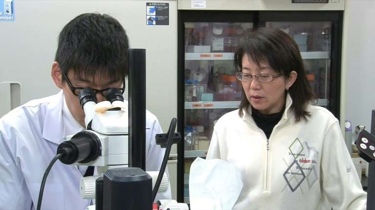 Japan's Riken research institute in Kyoto is a world leader in groundbreaking iPS cells