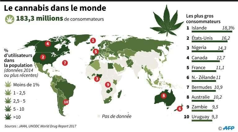 Le cannabis dans le monde