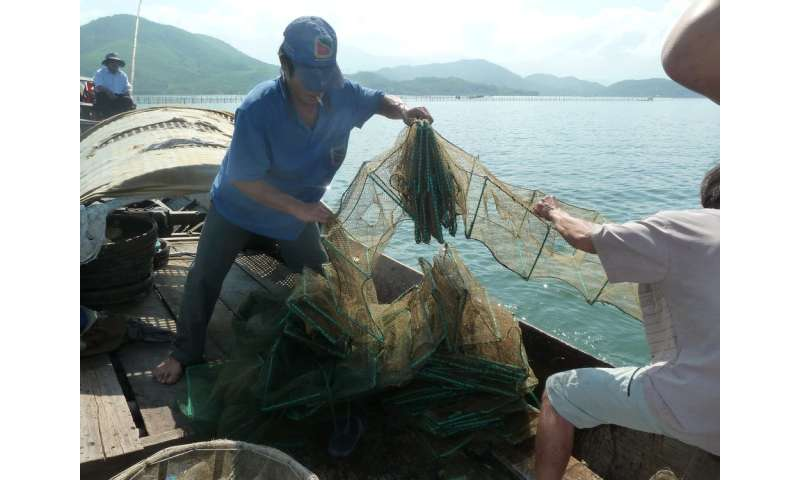 Lessons for sustainable fisheries are hiding in plain sight