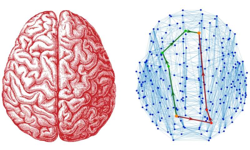 Like sightseeing in Paris – a new model for brain communication